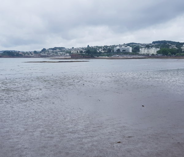"""TORQUAY:  A WEEKEND AT THE """"ENGLISH RIVIERA"""""""